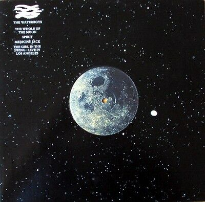 The Waterboys - The Whole Of The Moon (Vinyl)