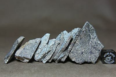 NWA Achondrite HED Identified Meteorite 62 grams cut into part slices