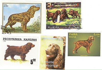 SUSSEX SPANIEL * 5 Unique International Dog Postage Stamps *Great Gift*