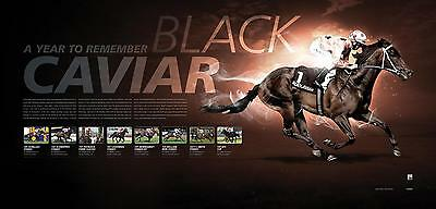 """Black Caviar """"a Year To Remember"""" Limited Edition Print Nolen Moody Makybe Diva"""