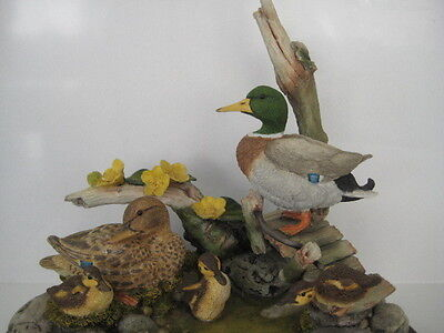 Country Artists Tranquility Mallard Duck Ducklings Michael Abberley Group 01947