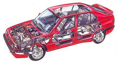 Manuale Officina Alfa Romeo 33 Workshop Manual Service Software