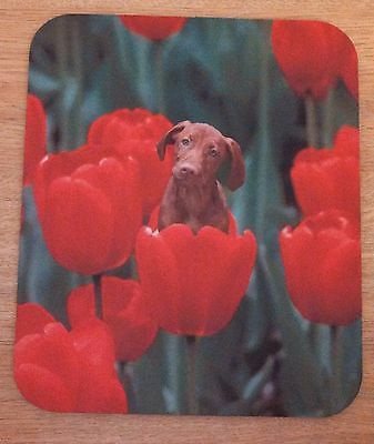 Computer mousepad with Vizsla dog photo in flowers