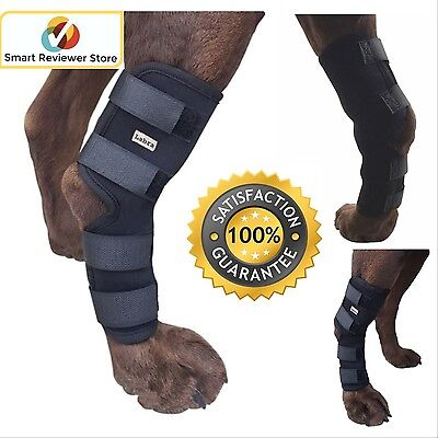 Knee Brace For Dogs Hock Rehab Rear leg Protector 4 Straps M Medium Dog By Labr