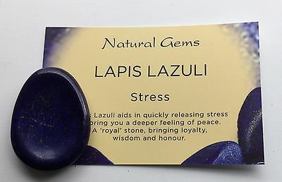 Lapis Lazuli Worry/Thumb Stone With Pouch Chakra Reiki Energy Charged Crystal