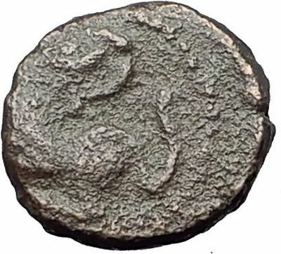 LEO I the THRACIAN 457AD Constantinople LION Authentic Ancient Roman Coin i60936