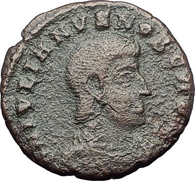 Julian II as Caesar 355AD Authentic Ancient Roman Coin Battle Horse man i60942