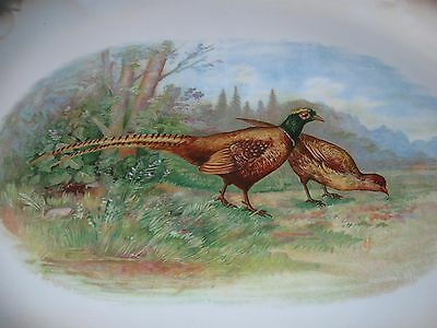 XL Early Porcelain PLATTER - PHEASANT HUNTING Hunt Cabin Decor WELLSVILLE OHIO