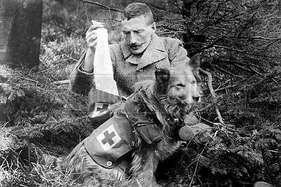 Dog Paramedic French soldier photo photograph 4x6 WWI