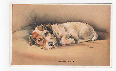 Sealyham  terrier  Vintage  Dog Postcard Mac Lucy Dawson