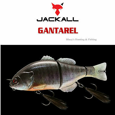 Jackall Gantarel 160mm floating segmented Cod Barra Lure;RT Spawn Gill