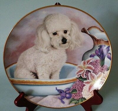Danbury Mint 1 collectible plate bathing beauty poodle puppy dog cute