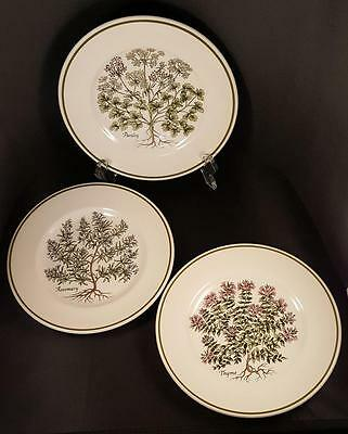 "Tiffany & Co. ""Herbs"" Salad/Dessert/Bread Plates Made in England by Johnson Brot"