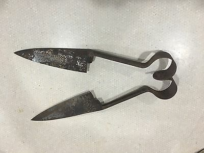 vintage sheep shears