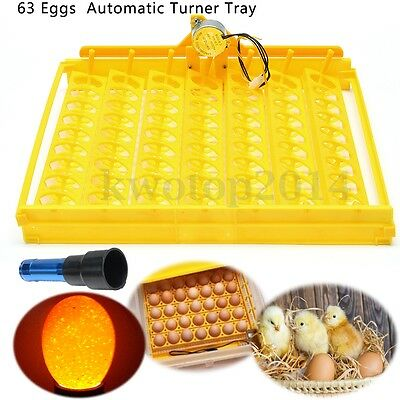 220V 63 Egg Tray Motor Automatic Hatching Machine Mini Incubator Duck Quail Bird