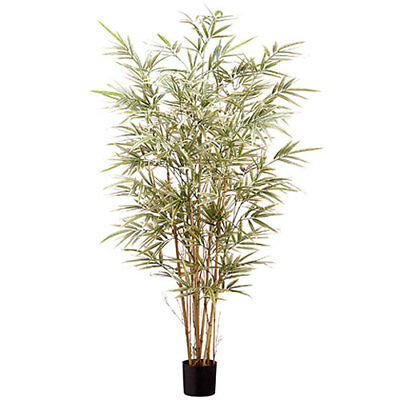 4' Bamboo Silk Tree w/Pot -960 Leaves -Variegated