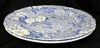 "Set of 2 The Spode Blue Room Collection Primula plates 10.5""."