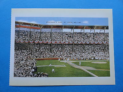 Sportsman's Park - St Louis Browns - Baseball Stadium Postcard
