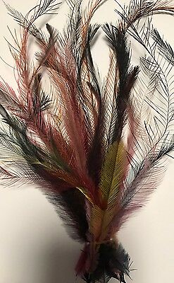 Dyed Mixed Colours Emu Feathers - 25 feathers - extra long 18 - 30cm