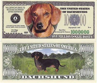 Novelty Notes /  Fun Money - DACKEL / DACHSHUND   *neu*