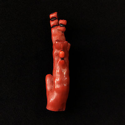 Dyed Red Fossil Coral Branches 170502 4.5in Stone of Emotional Balance