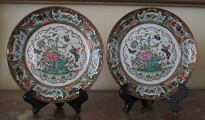 Pair of 19th Century Antique Chinese Rose Medallion plates 7 6/8 inches
