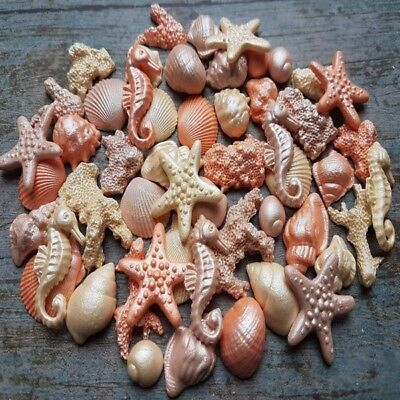 45 Edible Sugar Corals Shells Sea Horse Starfish Cake Cupcake Toppers Airbrushed