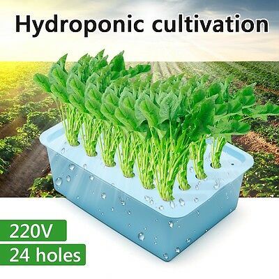 24 Holes Indoor Aerobic Soilless Cultivation Plant Site Hydroponic System Kit