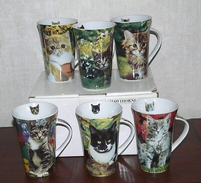 Lot of 6 Cat Cups Kitten Mugs by Hawthorne Direct never used