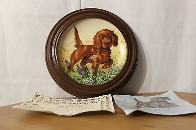 Collector Plates Field Puppies Missing The Point Irish Setter