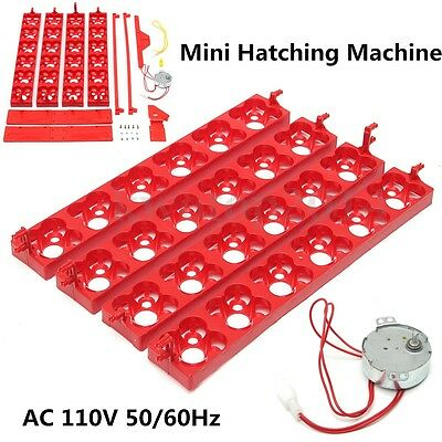 Automatic Eggs Turner 24 Chicken Duck Quail Bird Poultry AC 110V Incubator Tray