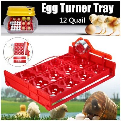 12 Egg Automatic Turner Hatch Chicken Duck Quail Bird Poultry Tray Incubator