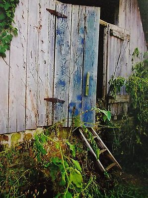 ART FARM BARN BLUE DADY BLUE PROTECT FROM BAD GHOST CANVAS PRINT Like Eggleston
