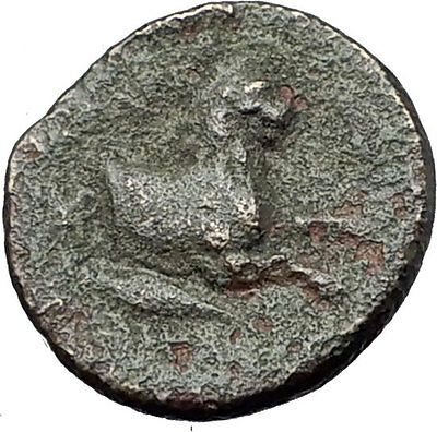 LYSIMACHOS 306BC Lysemacheia Athena Lion Caduceus Ancient Greek Coin RARE i61543