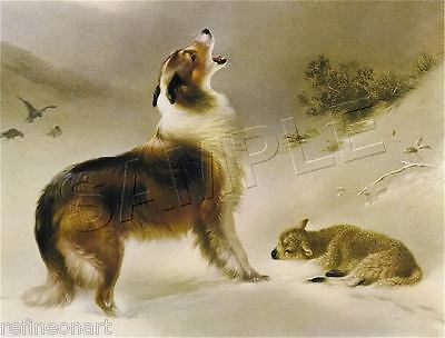 """Handmade Oil Painting repro Collie Found Lost Sheep Lamb """" Shepards Call"""""""