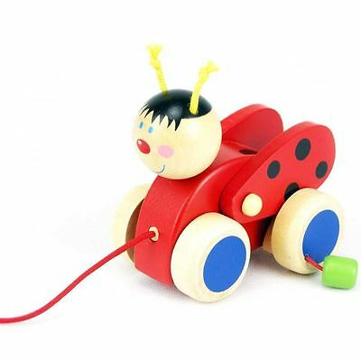 Wooden Pull Along Toy Ladybird, Toddler Pull along toys