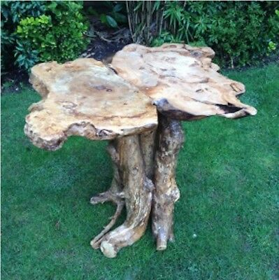 LARGE Coffee Root Wooden Stand Side Table Garden Indoor Outdoor 62cm High