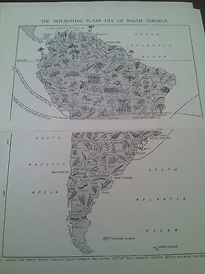 1924 Map of Plant Life of South America 2 Small Pages Ideal to Frame