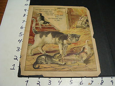early German animal book, picture page----CAT