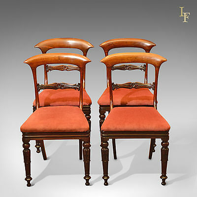 Antique Set of 4 Dining Chairs, Regency, English, Carved, Rosewood, Seat, c.1820