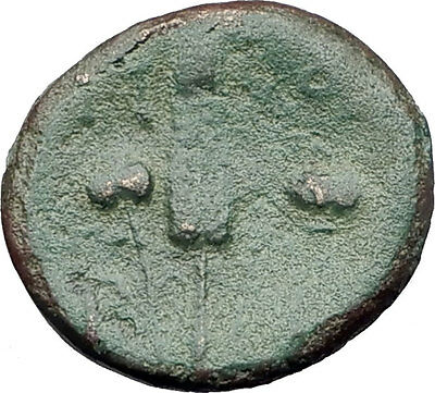 300-100BC Original Genuine Ancient GREEK CITY Coin ARTEMIS GRAIN EAR Rare i61366