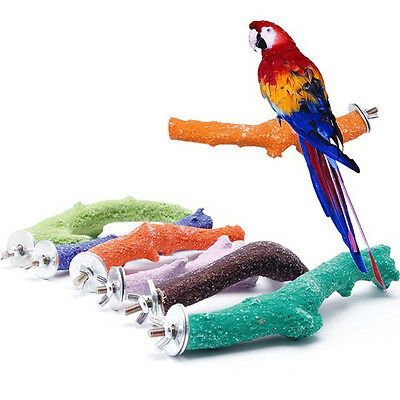 Colorful Pet Bird Bite Chew Toy Paw Grinding Stand Perches Branch Cage Parrot UK