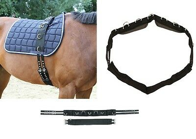 lunging belt Pony Warmblood Nylon with 9 Rings Kerbl Strap lunging Full