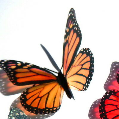 B001SC - Monarch Butterflies Weddings Crafts, Cake Topper, Decorations, Cards