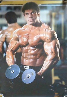 Vintage Extremely Rare  Body Building Poster Lou Ferrigno (The Hulk).