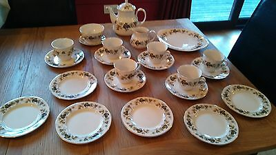"Royal Doulton ""Larchmont"" 23 piece Tea Set"