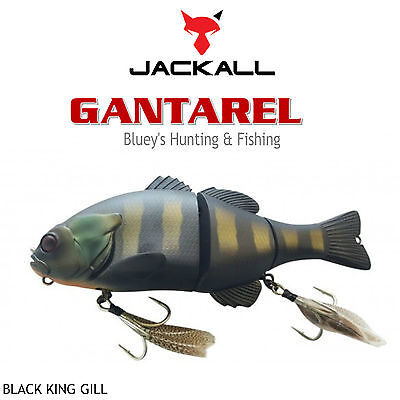 Jackall Gantarel 160mm floating segmented Cod Barra Lure;black king gill