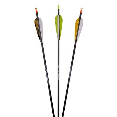 Finished Arrow Carbon Arrow Gold Tip Warrior Feathers Spine 340 400 500 600 700