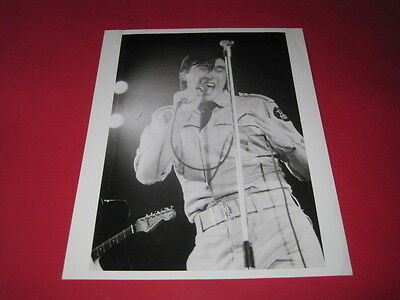 BRYAN FERRY ROXY MUSIC 10 x 8 inch promo photo photograph #F103_4653