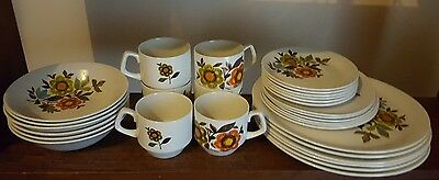 Vintage Wood and Sons 6 Person 'Hacienda' Ironstone Dinner Setting